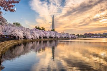 Washington DC, USA in Spring