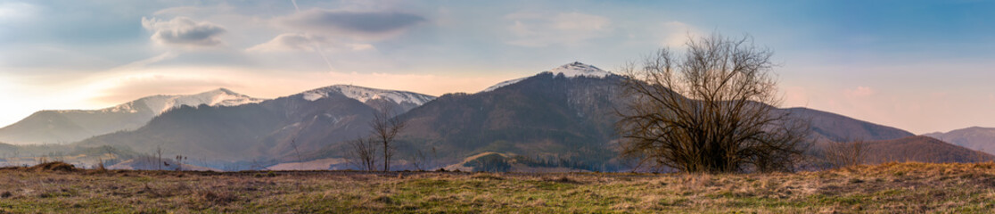 panorama of the Borzhava mountain ridge with snowy tops. wonderful springtime landscape of Ukrainian Carpathians