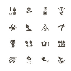 Flowers Growing icons. Perfect black pictogram on white background. Flat simple vector icon.
