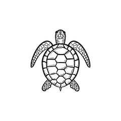 Vector hand drawn Turtle outline doodle icon. Turtle sketch illustration for print, web, mobile and infographics isolated on white background.