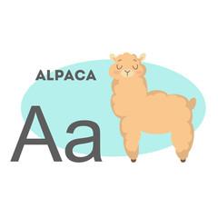 Alpaca on alphabet.