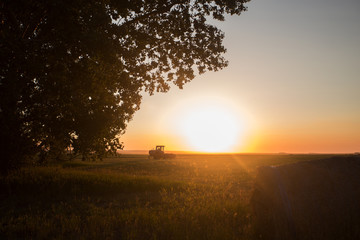A swather and a tall leafy tree in a agricultural landscape in a quiet rural sunset