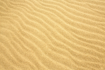 Sand texture pattern background / Photography of a desert sand dune