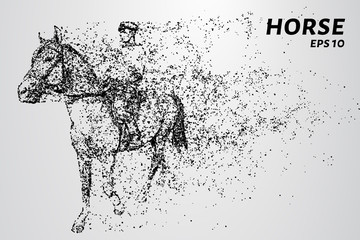 Horse of the particles. The horse is made up of little circles