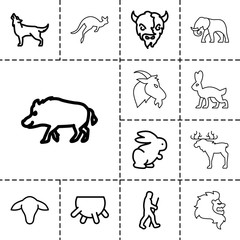 Mammal icons. set of 13 editable outline mammal icons