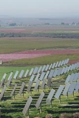 Solar park.