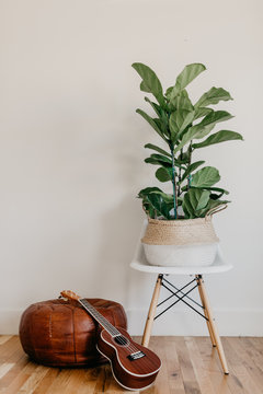 Lifestyle Home with Fig Tree White Midcentury Modern Chair Ukulele and Leather Pouf