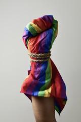 gay rights repression