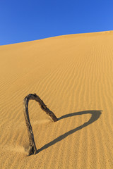 Heart shape in Sand dunes
