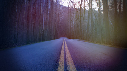 Colorful Sun Blurs on Abstract Street Photography of a Mountain Road in the Deep Forest