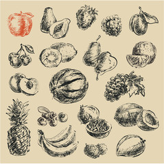 drawing fruits, hand drawn fruits set