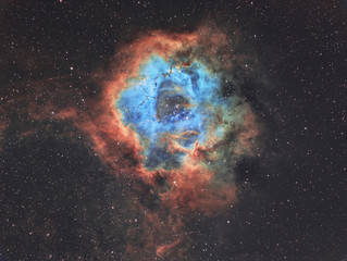 The Rosette nebula in widefield in Hubble Space telescope palette