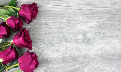 Pink Roses Over Rustic Wooden Background, Horizontal, Copy Space