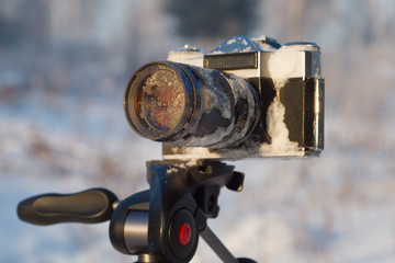 retro camera on a tripod in the woods on a winter day