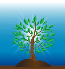 Tree of light icon vector