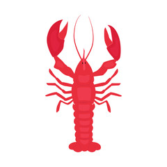 Cooked lobster vector illustration