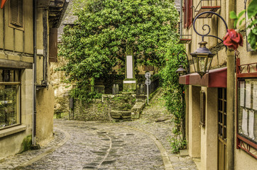 narrow street in the old medieval village of Conques France