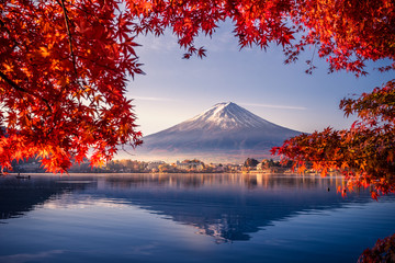 Deurstickers Natuur Colorful Autumn Season and Mountain Fuji with morning fog and red leaves at lake Kawaguchiko is one of the best places in Japan