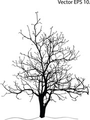 Dead Tree without Leaves Vector Illustration Sketched, EPS 10.