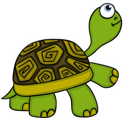Animal Cute Turtle