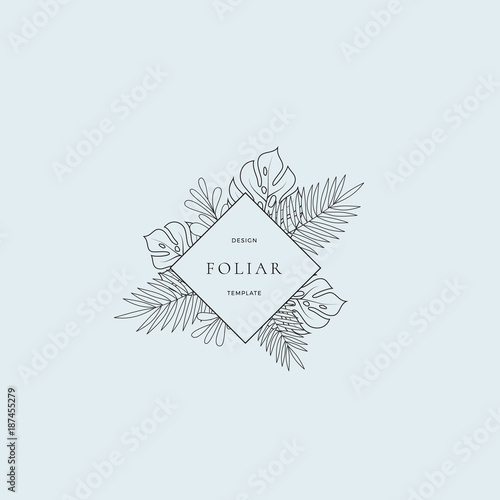 Tropical Leaves Fashion Boutique Sign Or Logo Template Abstract Monstera Foliage With Rhombus Border And