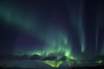 Aurora Borealis, Autumn5