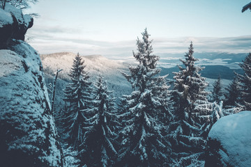 Sunrise Winter View