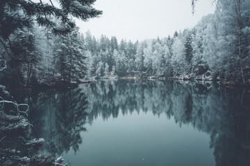 Adrspach Lake Wonderland