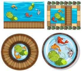 Different design of pool with fish