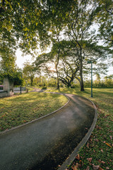 Beautiful urban city park at sunny day Bangkok city, Thailand. Small concrete walkway on green grass lawn in city park with warm sunset sunlight.