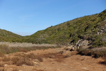 Dried up river bed surrounded by scrubland and heath