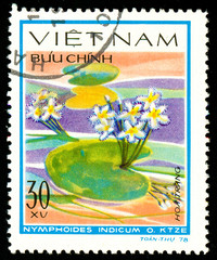 Ukraine - circa 2018: A postage stamp printed in Vietnam shows drawing flower Water snowflake or Nymphoides indicum. Series: Aquatic flowers. Circa 1978.