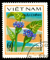 Ukraine - circa 2018: A postage stamp printed in Vietnam shows drawing flower Arrow head, Monochoria vaginalis. Series: Aquatic flowers. Circa 1978.