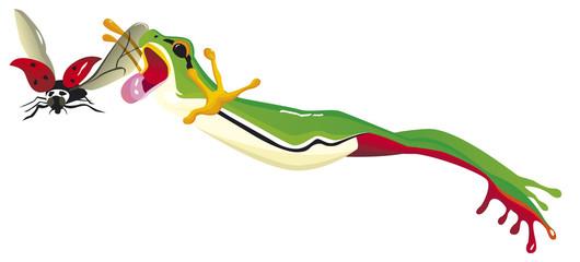 Grenouille verte sautant pour attraper une coccinelle