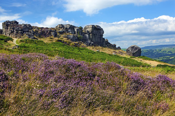 Cow and Calf rocks, Ilkley Moor, Yorkshire, England