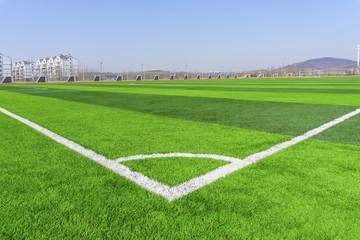 Football field green lawn