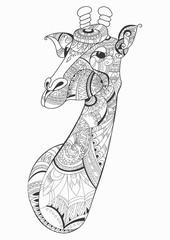 Giraffe head doodle on white background. vector