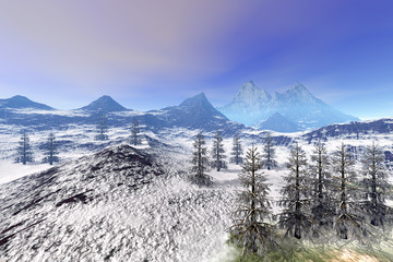 Forest, an alpine landscape, beautiful snow on the ground, coniferous trees and a blue sky.