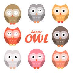 Colorful owl cartoon set, vector illustration