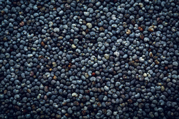 Poppy seeds macro Background