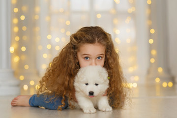 Little curly girl with a samoyed puppy