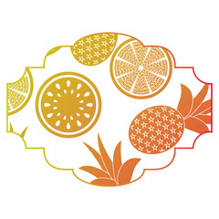 frame with fruits pattern