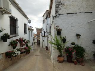 Golondrinas al vuelo en calle de Iznatoraf,pueblo historico de Jaén, Andalucía (España) junto a Villanueva del Arzobispo, en la comarca de las Villas.