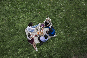 Group of friends having picnic in nature