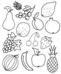 fresh fruit doodle, sketch background