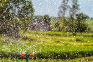 Watering the garden using a rotation sprinkler. Water drops. Agricultural background with limited depth of field.