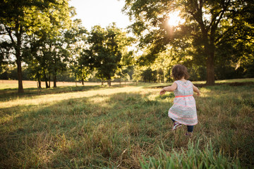 Little Girl Walking in Pasture with Sunlight through the Trees