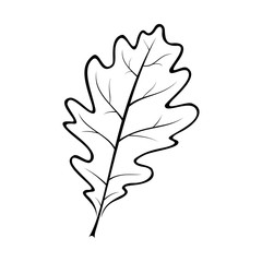 black and white vector illustration of an oak leaf