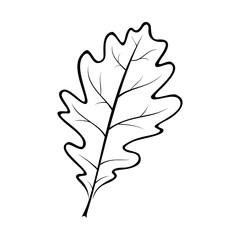 black and white vector illustration of an oak leaf