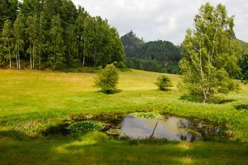 Summer landscape with forests, meadows, pond, rocks and sky